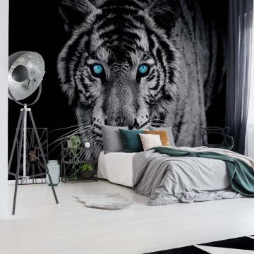 Tiger Animal Photo Wallpaper Wall Mural