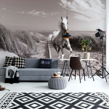 White Horse Beach Black And White Photo Wallpaper Wall Mural