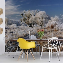 Winter Has Arrived Photo Wallpaper Mural