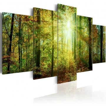 Tablou - Wild Forest