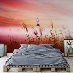 Field Sunrise Countryside Meadow Photo Wallpaper Wall Mural