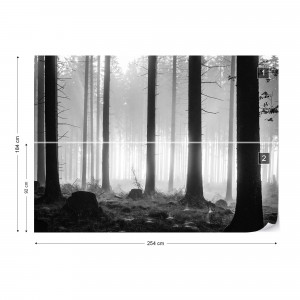 Black And White Atmospheric Forest Photo Wallpaper Wall Mural