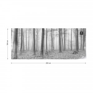 Black And White Misty Forest Photo Wallpaper Wall Mural