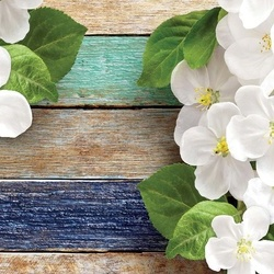 Flowers On Painted Wood Plank Texture Photo Wallpaper Wall Mural