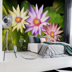 Flowers Photo Wallpaper Wall Mural