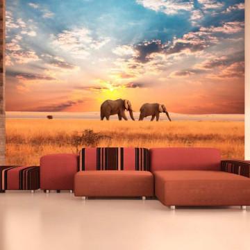 Fototapet - African savanna elephants