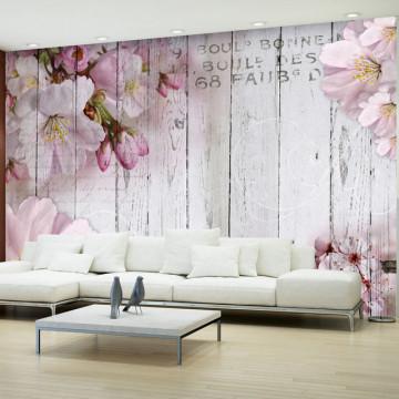 Fototapet - Apple Blossoms