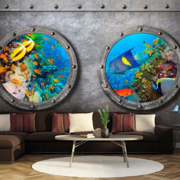 Fototapet autoadeziv - Window to the underwater world