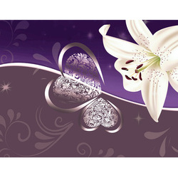 Fototapet - Lily in shades of violet