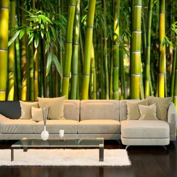 Fototapet - Oriental Garden