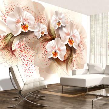 Fototapet - Pale yellow orchids