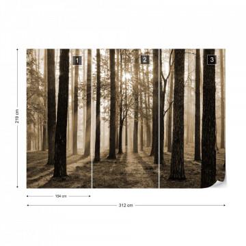 Fototapet - Răsărit de Soare în Pădure – Sepia