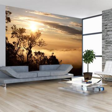 Fototapet - Sky and trees