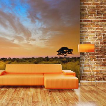 Fototapet - South African sunset