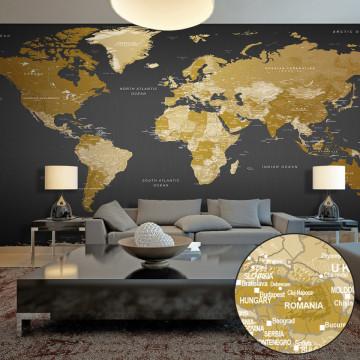 Fototapet XXL - World Map: Modern Geography II