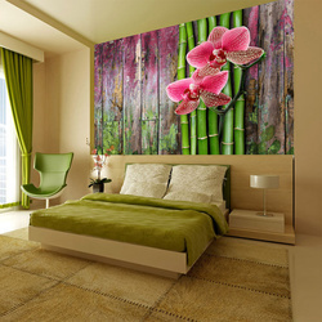 Fototapet - Zen plants