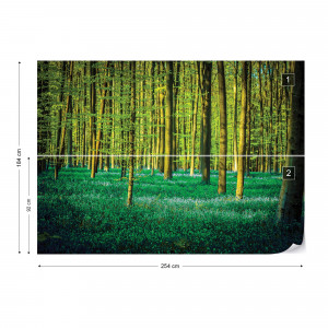 Green Forest Trees Photo Wallpaper Wall Mural
