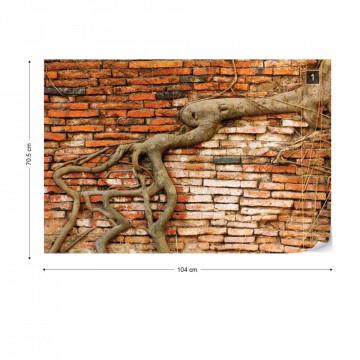Grunge Brick Wall Texture Tree Roots Photo Wallpaper Wall Mural