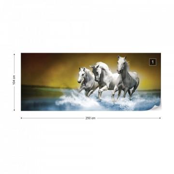 Horses Photo Wallpaper Wall Mural