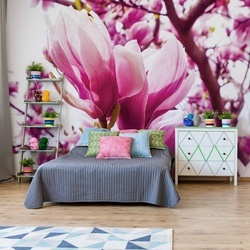 Magnolia Tree Photo Wallpaper Wall Mural