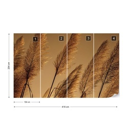 Pampas Grasses Blowing In The Wind Photo Wallpaper Wall Mural