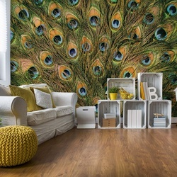 Peacock Feathers Photo Wallpaper Wall Mural