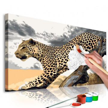 Pictatul pentru recreere - Cheetah