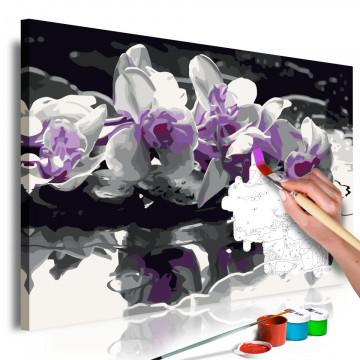 Pictatul pentru recreere - Purple Orchid (Black Background & Reflection In The Water)