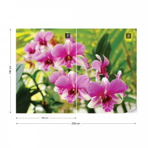 Pink Orchids Photo Wallpaper Wall Mural