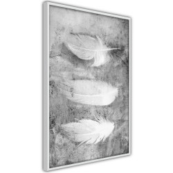 Poster - Delicate Feathers