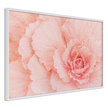 Poster - Delicate Petals