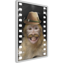 Poster - Dressed Up Monkey