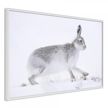 Poster - Escape in the Snow