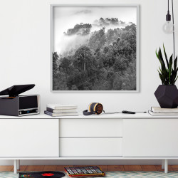 Poster - Foggy Forest