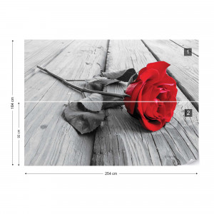 Red Rose Black And White Photo Wallpaper Wall Mural