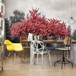 Red Tree Black And White Photo Wallpaper Wall Mural