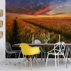 Somewhere At Sunset Photo Wallpaper Mural