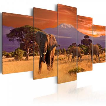 Tablou - Africa: Elephants