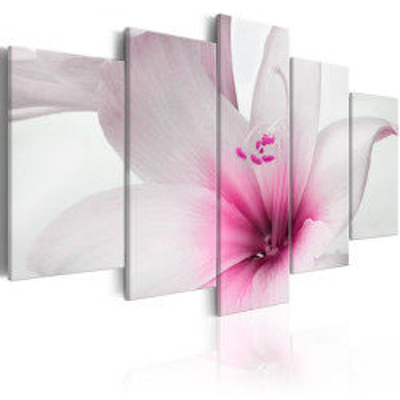 Tablou - Amarylis: Pink Charm