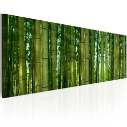 Tablou - Canvas print - Bamboo in the sunshine
