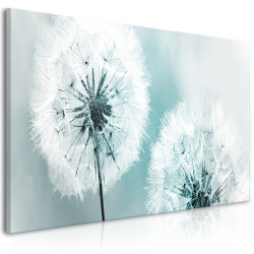 Tablou - Fluffy Dandelions (1 Part) Blue Wide