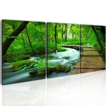 Tablou - Forest broadwalk - triptych