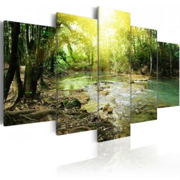 Tablou - Forest river
