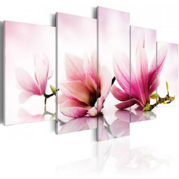 Tablou - Magnolias: pink flowers