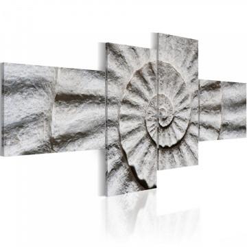 Tablou - Stone shell