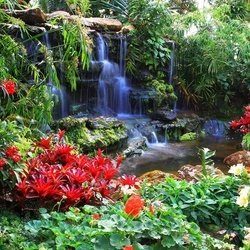 Waterfall Forest Nature Photo Wallpaper Wall Mural