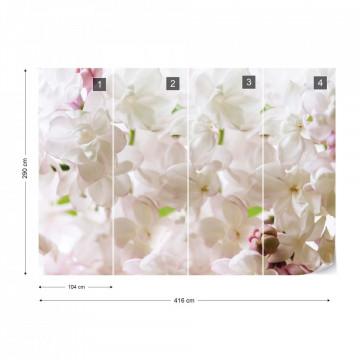 White Flowers Photo Wallpaper Wall Mural