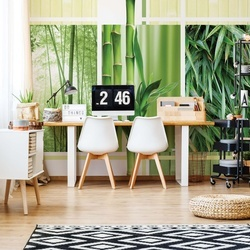 Bamboo Forest Nature Photo Wallpaper Wall Mural