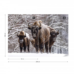 Buffaloes In The Snow Photo Wallpaper Wall Mural