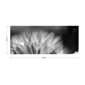 Dandelions Nature Black And White Photo Wallpaper Wall Mural